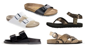 birkenstocks the loop